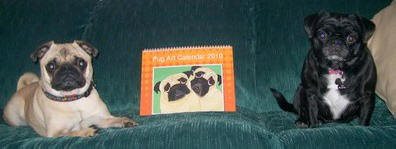 Pugsley and Lola love their Pug Art Calendar!