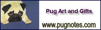 Pug Notes Banner